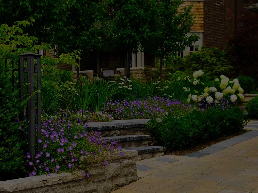Moore Commercial Garden Design