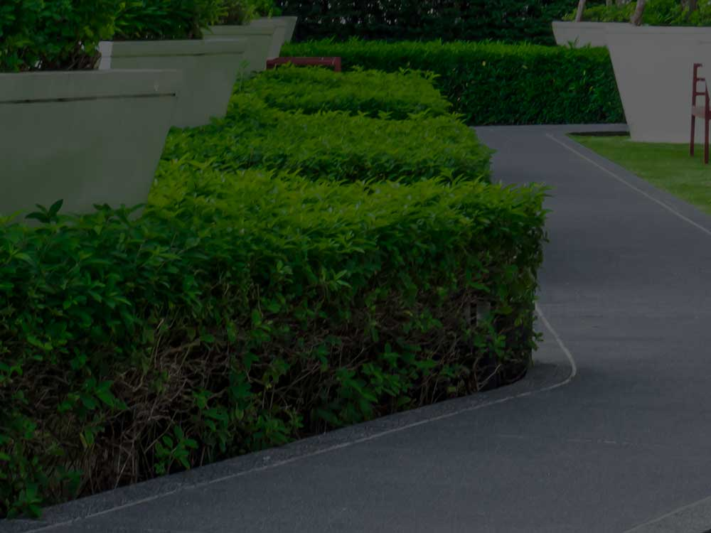 Moore Commercial Landscaping
