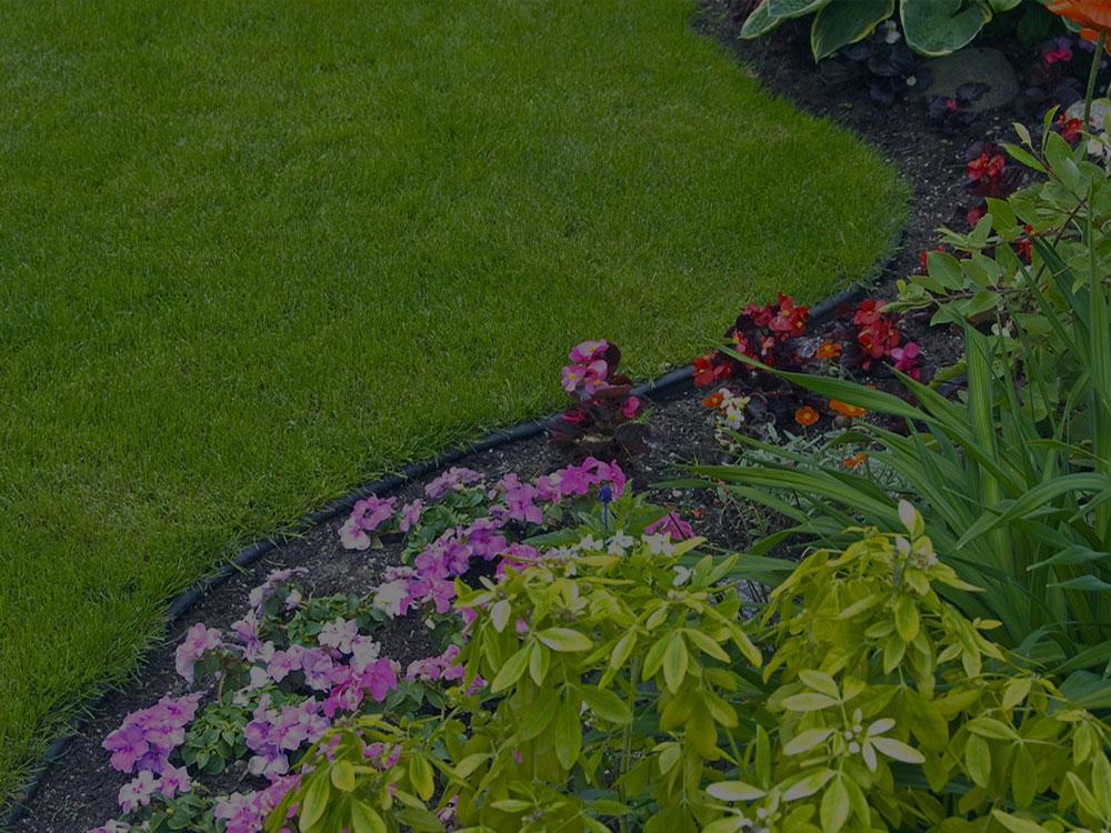 Moore Garden Design