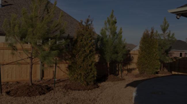 Moore Tree Service